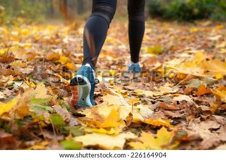 Morning run in the autumn woods - stock photo