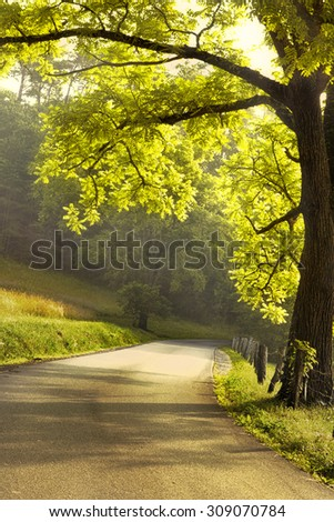 Morning scene in Cades Cove in the Great Smoky Mountains National Park - stock photo