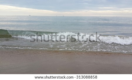 morning sea wave in summer