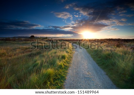 morning sunbeams over rural road through marshes - stock photo