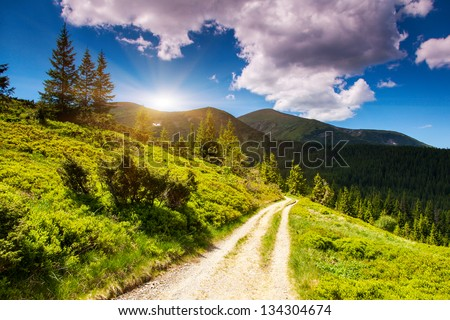 Morning sunny day is in mountain landscape. Carpathian, Ukraine, Europe. Beauty world. - stock photo