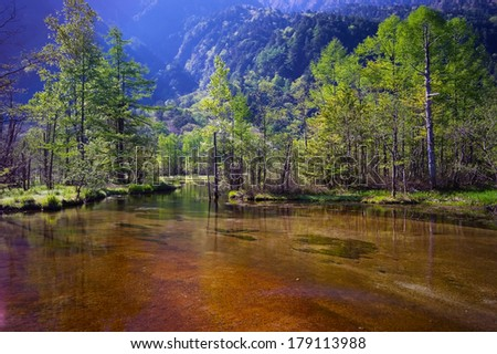Morning TASHIROIKE Pond, Nagano Prefecture/Japan, 2013/6/4.  - stock photo
