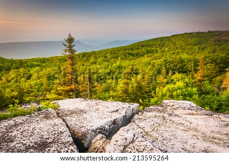 Morning view from Bear Rocks Preserve, in Dolly  Sods Wilderness, Monongahela National Forest, West Virginia. - stock photo