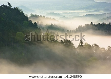 Morning view into landscape full of fog and tree tops - stock photo