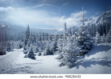 Morning winter scenery with blue sky. Snowy mountain valley. - stock photo