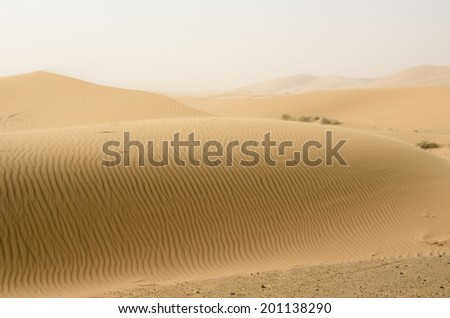 Moroccan desert dune - stock photo