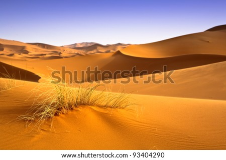 Moroccan desert dunes landscape. Desertification effects background.