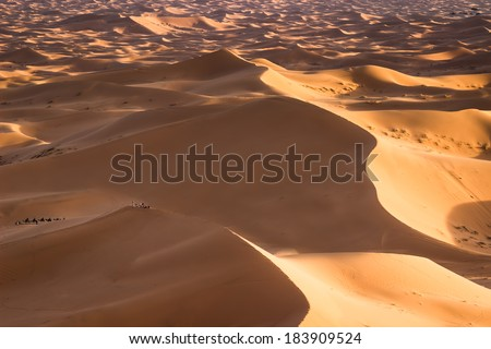 MOROCCO - JANUARY 10, 2014: Sahara desert dunes at sunset - stock photo