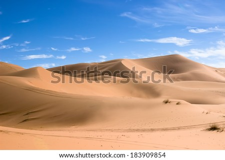 MOROCCO - JANUARY 10, 2014: Sahara desert dunes, clear blue sky