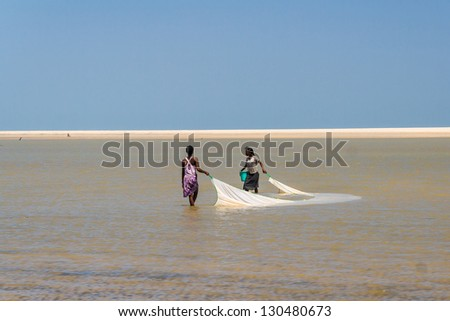MORONDAVA, MADAGASCAR, OCT 29: Unidentified malagasy women fishing for shrimp net on oct 29, 2007 in the lagoon of Morondava in the east of Madagascar