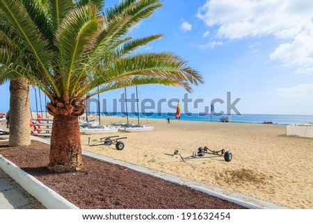 MORRO JABLE, FUERTEVENTURA - FEB 7, 2014: palm trees on promenade along a beach in Morro Jable. This is a popular holiday resort on Fuerteventura island.