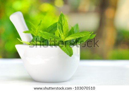 Mortar and mint leaves - stock photo