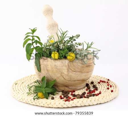 Mortar and pestle with herbs and spices - stock photo