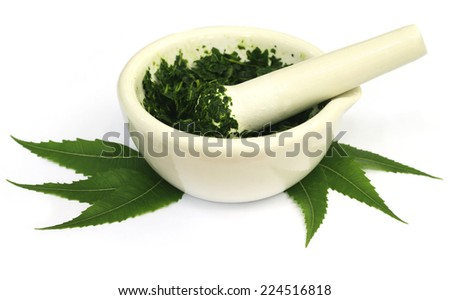 Mortar and pestle with medicinal neem leaves over white background - stock photo