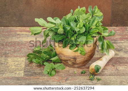 Mortar with fresh mint leaves. Fresh green mint in mortar on rustic  background. Copy space composition. Macro, selective focus - stock photo