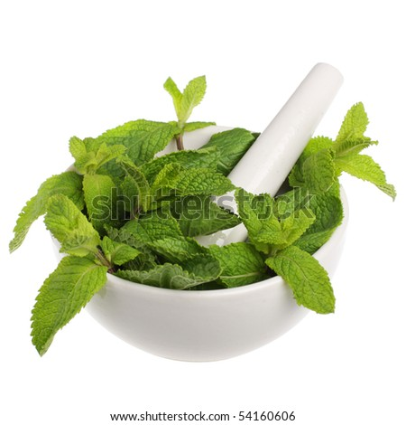 Mortar with mint isolated on white background - stock photo