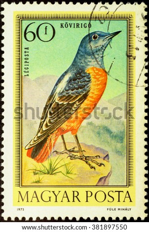 "MOSCOW, RUSSIA - FEBRUARY 25, 2016: A stamp printed in Hungary shows common rock thrush (Monticola saxatilis), series ""Birds"", circa 1973"
