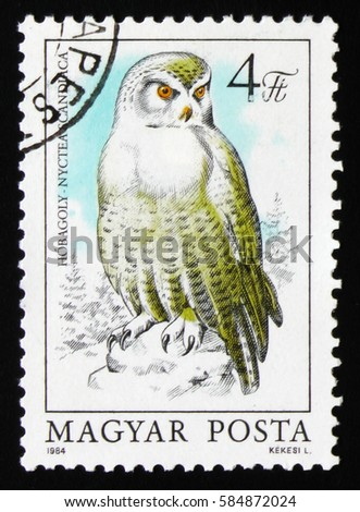 "MOSCOW, RUSSIA - FEBRUARY 19, 2017: A stamp printed in Hungary shows snowy owl (Bubo scandiacus or Nyctea scandiaca), series ""Owls"", circa 1984"