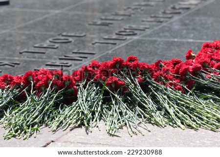 Moscow, Russia. Red carnations assigned to the memorial Tomb of the Unknown Soldier. Events dedicated to the celebration of Victory Day (WWII) - stock photo