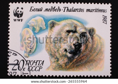 Moscow, USSR- circa 1987: Postal stamp printed mail USSR shows image of polar bears - stock photo