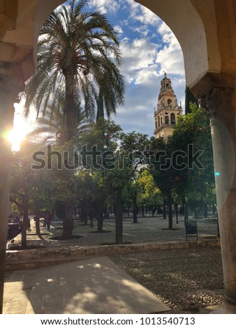 Mosque of Cordoba from Patio de los Naranjos. Cordoba, Spain. January 2017