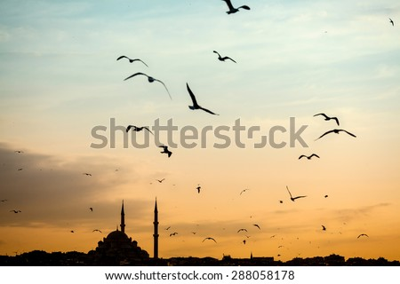 Mosque silhouette Istanbul - stock photo