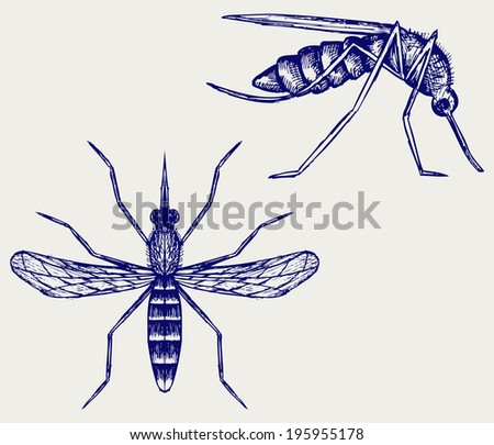 Mosquito. Doodle style. Raster version - stock photo
