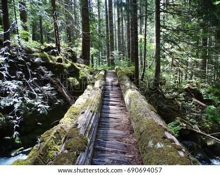 log bridge stock images royalty free images vectors