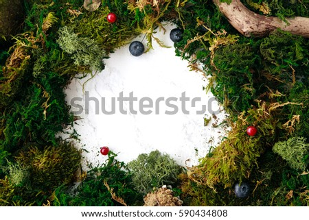 Moss frame with berries and plants. Copy space