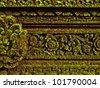 Moss green grass background texture design - stock photo