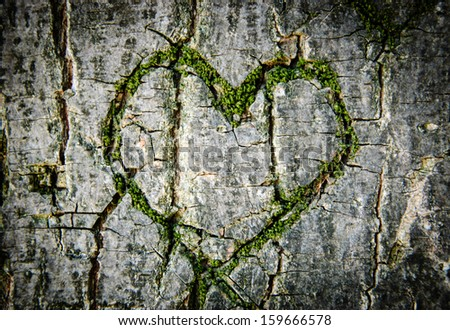 Moss-grown heart on cracked tree bark. Symbol of true love -  in sickness and in health, in good times and in bad, and in joy as well as in sorrow. Shadowed angles. Postcard idea. - stock photo