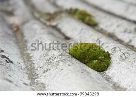Moss on an undulated roof - stock photo