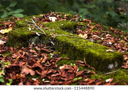 mossy old Catholic cross on the vault - stock photo