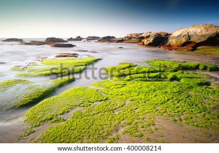 Mossy rock and sunset at the beach.  - stock photo