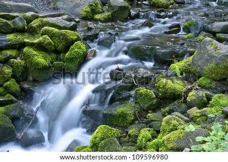 Mossy Stones - Small Mountain River Cascades. Olympic National Park, WA, USA. Nature Photo Collection. - stock photo