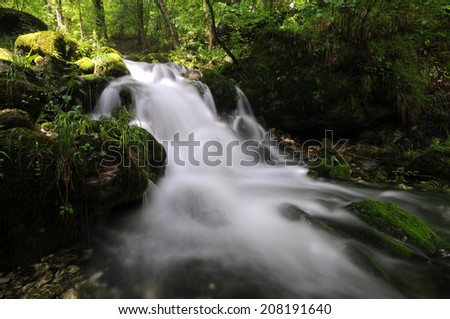 Mossy stream in autumn  - stock photo