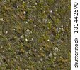 Mossy Wall. Seamless Tileable Texture. - stock photo