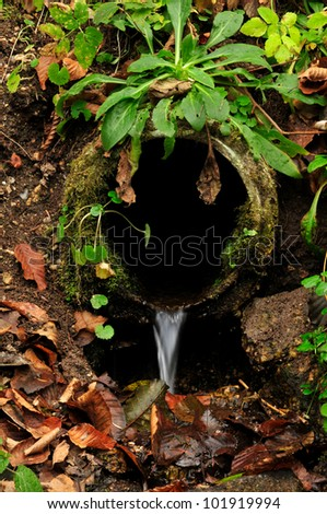 mossy water pipe in the forest - stock photo