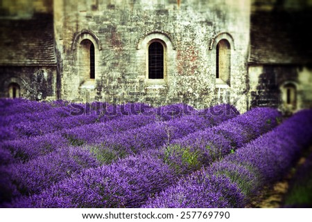 Most beautiful lavender field in Provence. An ancient monastery Abbaye Notre-Dame de Senanque (Abbey of Senanque). France. Filtered image, old lens and vintage effect applied. Grunge and blured corner - stock photo