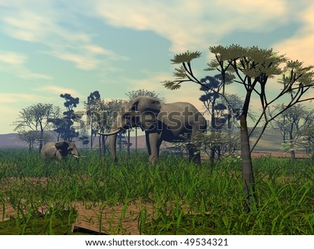 mother and child elephants in savanna - stock photo