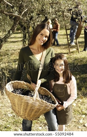 mother and daughter during olives harvest - stock photo
