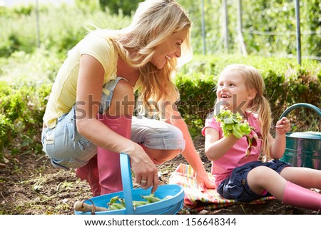 Mother And Daughter Harvesting Radish On Allotment - stock photo