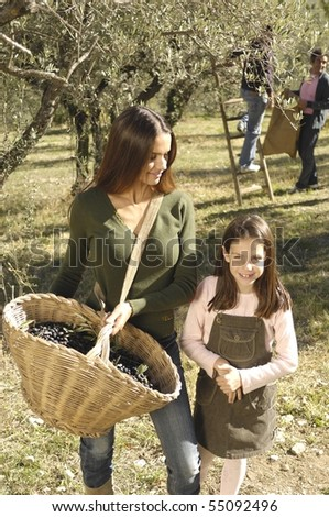 Mother and daughter in a field during a olives harvest - stock photo