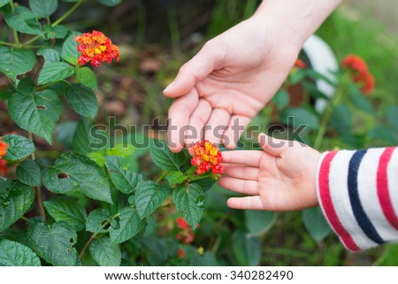 Mother and daughter touching the Lantana flowers
