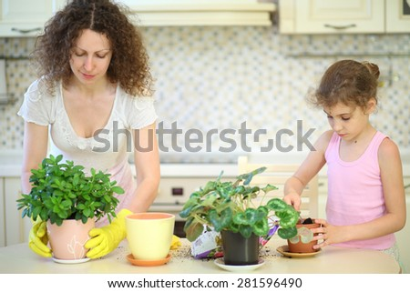 Mother and daughter transplant houseplants in the kitchen - stock photo
