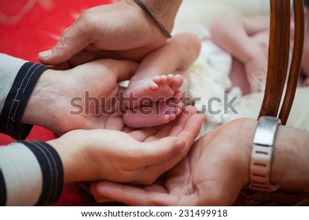 Mother and father hold babies feet in their hands expressing love and carrying concept - stock photo