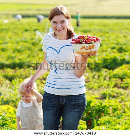 mother and her little kid child on organic strawberry farm in summer, picking berries. Outdoors. Funny kid eating fresh organic berries. On sunny warm summer day. - stock photo