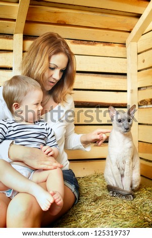 mother, baby and funny cat on hayloft