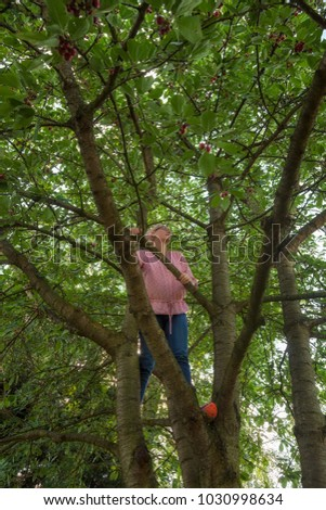mother climbing a cherry tree to pick some fresh fruits