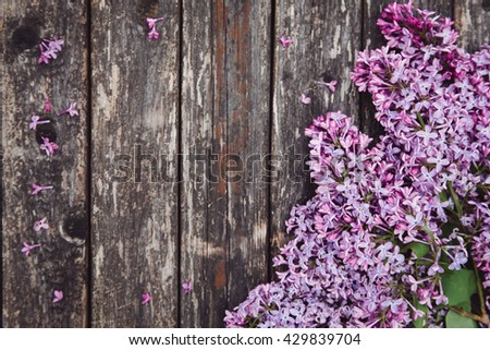 Mother day background with lilac flowers - stock photo